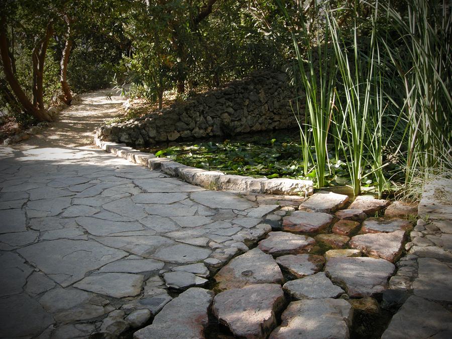 히브리대학교 식물원
